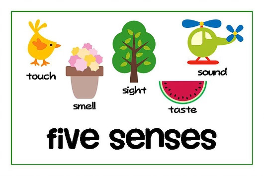 5 Senses - Using the 5 sence can make your brand easy to recall & invoke favorable feelings